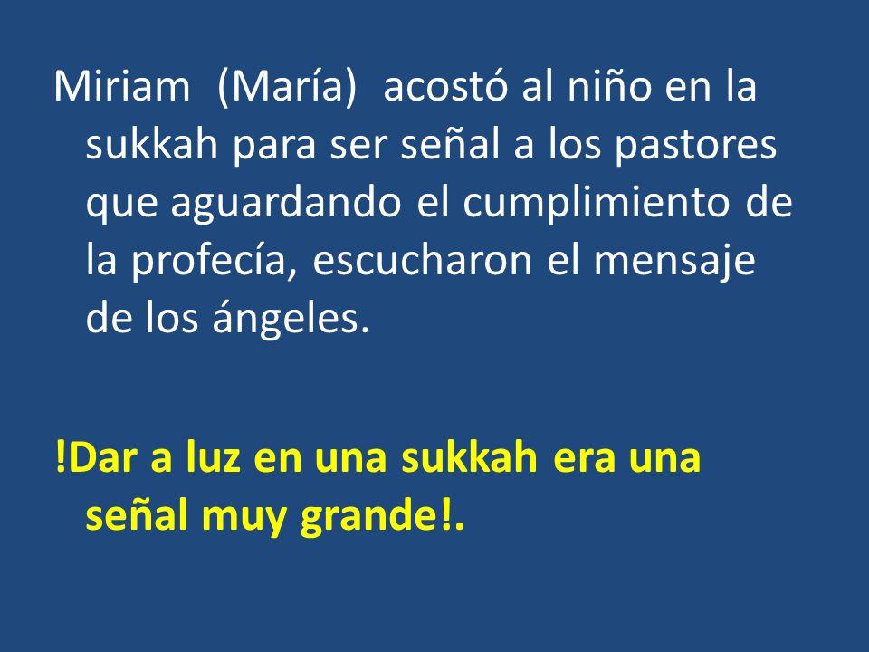 Miriam (María) acostó al niño en la sukkah para ser señal a los pastores que aguardando el cumplimiento de la profecía, escucharon el mensaje de los ángeles.