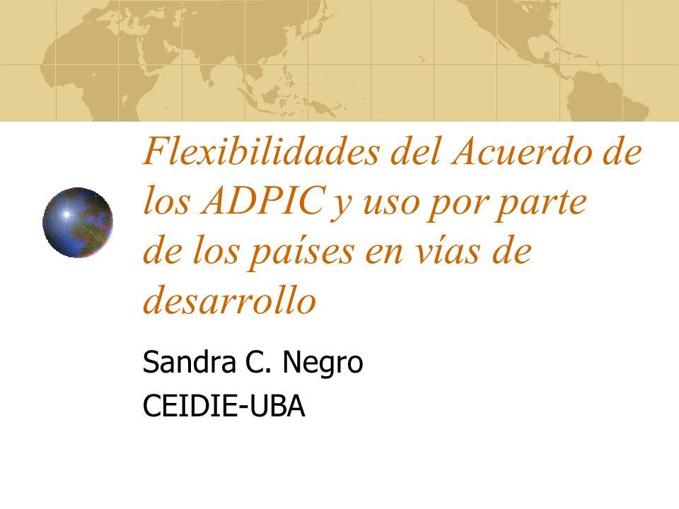 Flexibilidades del Acuerdo de los ADPIC y uso por parte de los países en vías de desarrollo Sandra C. Negro CEIDIE-UBA