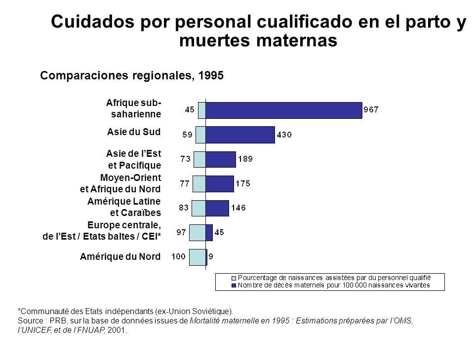 Cuidados por personal cualificado en el parto y muertes maternas Comparaciones regionales, 1995 Afrique sub- saharienne Asie du Sud Asie de lEst et Pa