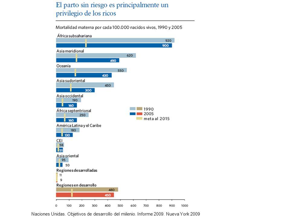 Naciones Unidas. Objetivos de desarrollo del milenio. Informe 2009. Nueva York 2009