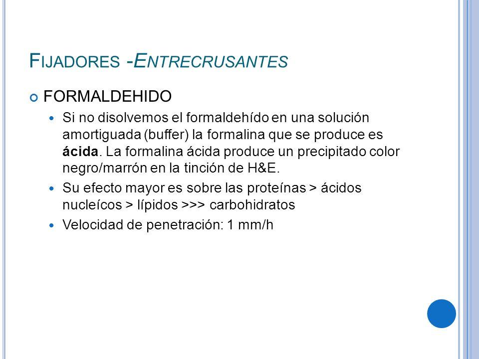 F IJADORES -E NTRECRUSANTES FORMALDEHIDO Si no disolvemos el formaldehído en una solución amortiguada (buffer) la formalina que se produce es ácida. L
