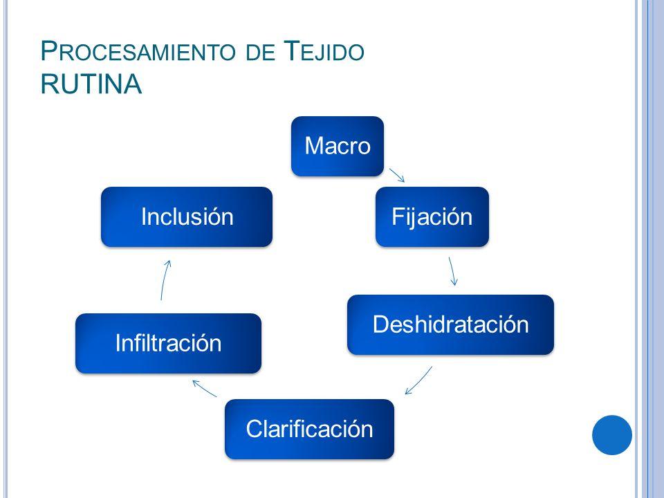 P ROCESAMIENTO DE T EJIDO RUTINA MacroFijaciónDeshidrataciónClarificaciónInfiltraciónInclusión