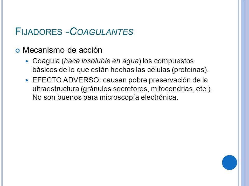 F IJADORES -C OAGULANTES Mecanismo de acción Coagula (hace insoluble en agua) los compuestos básicos de lo que están hechas las células (proteinas). E