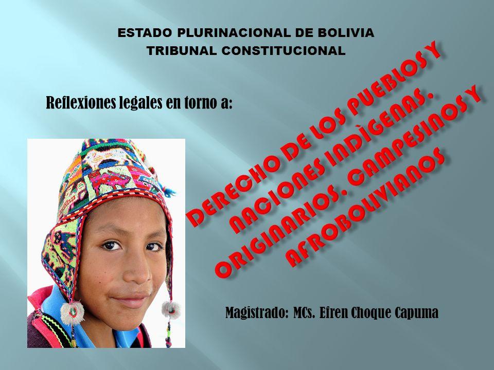 ESTADO PLURINACIONAL DE BOLIVIA TRIBUNAL CONSTITUCIONAL Magistrado: MCs. Efren Choque Capuma Reflexiones legales en torno a: