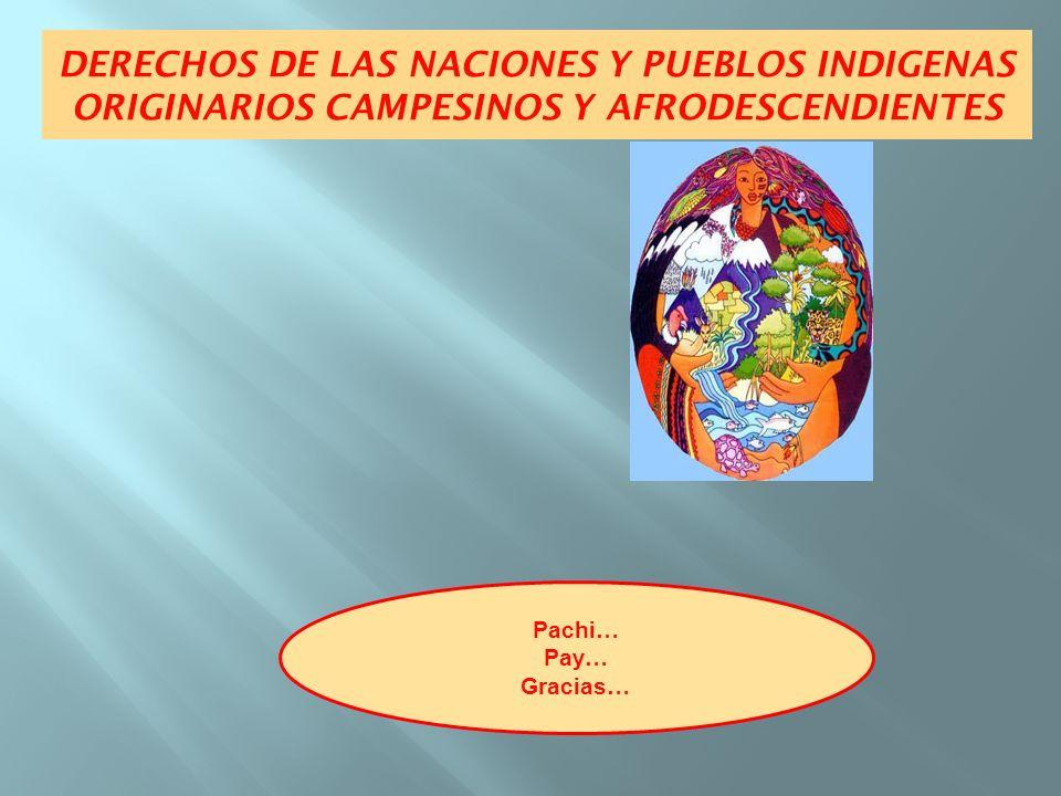Pachi… Pay… Gracias… DERECHOS DE LAS NACIONES Y PUEBLOS INDIGENAS ORIGINARIOS CAMPESINOS Y AFRODESCENDIENTES