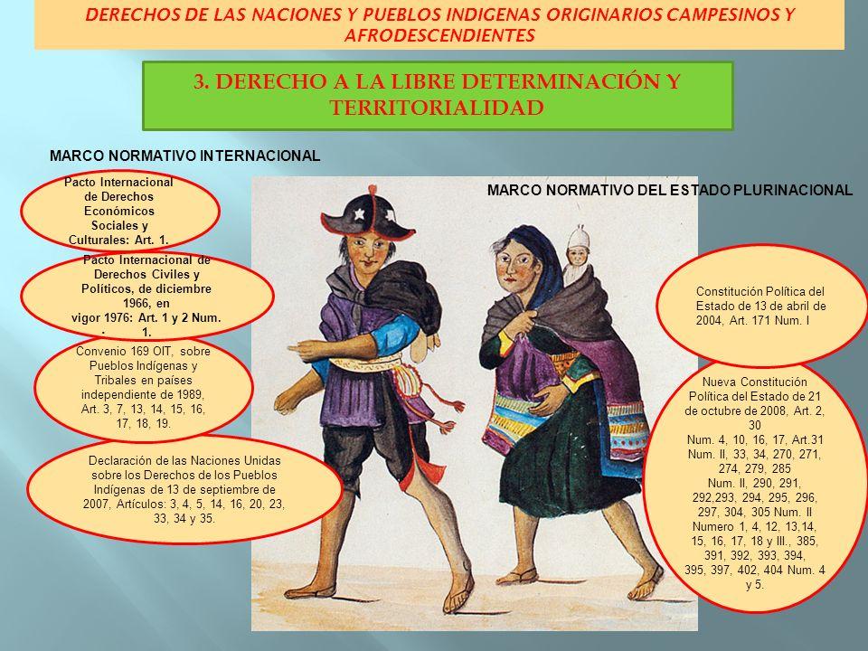 DERECHOS DE LAS NACIONES Y PUEBLOS INDIGENAS ORIGINARIOS CAMPESINOS Y AFRODESCENDIENTES MARCO NORMATIVO INTERNACIONAL MARCO NORMATIVO DEL ESTADO PLURI