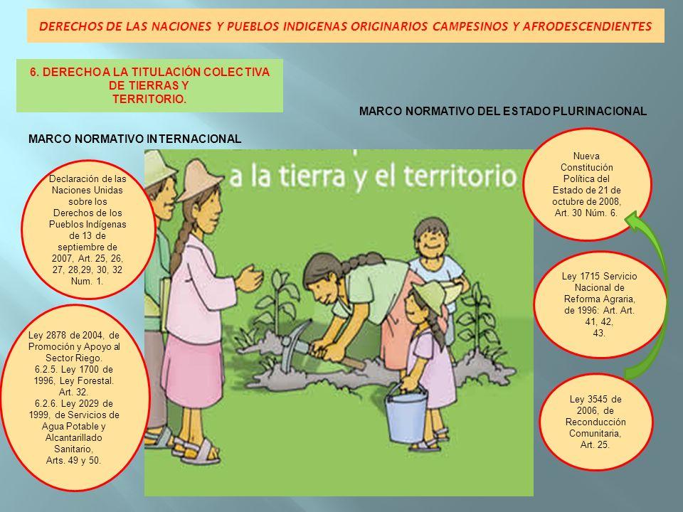 DERECHOS DE LAS NACIONES Y PUEBLOS INDIGENAS ORIGINARIOS CAMPESINOS Y AFRODESCENDIENTES MARCO NORMATIVO INTERNACIONALMARCO NORMATIVO DEL ESTADO PLURINACIONAL Convenio 169 OIT, sobre Pueblos Indígenas y Tribales en países independiente de 1989, Art.6 Num.