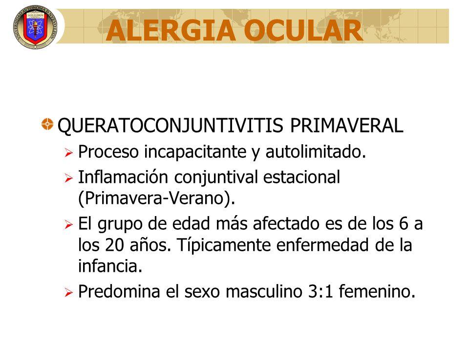 ALERGIA OCULAR QUERATOCONJUNTIVITIS PRIMAVERAL Proceso incapacitante y autolimitado. Inflamación conjuntival estacional (Primavera-Verano). El grupo d