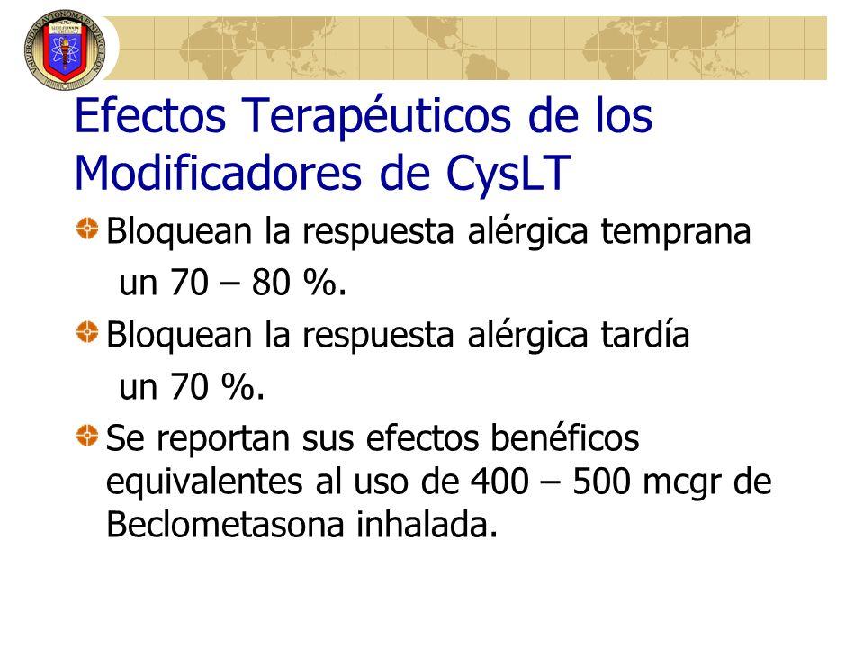 Efectos Terapéuticos de los Modificadores de CysLT Bloquean la respuesta alérgica temprana un 70 – 80 %. Bloquean la respuesta alérgica tardía un 70 %