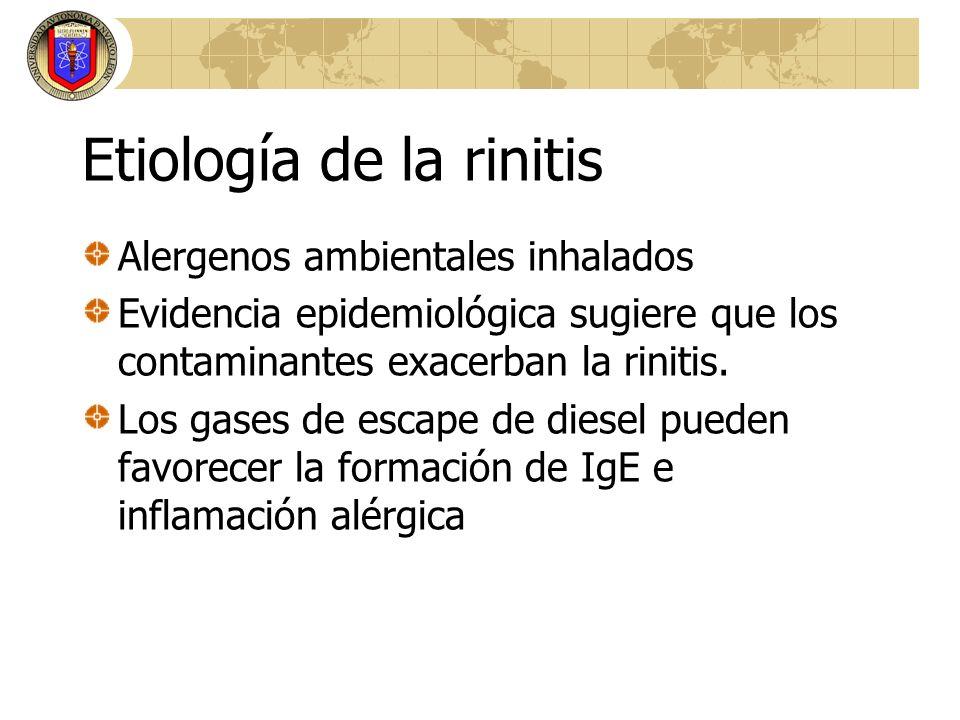 Etiología de la rinitis Alergenos ambientales inhalados Evidencia epidemiológica sugiere que los contaminantes exacerban la rinitis. Los gases de esca