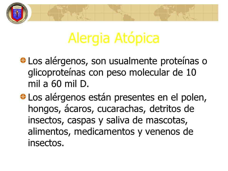 RINITIS ALERGICA Corticosteroides Tópicos: 1.Agentes antiinflamatorios potentes 2.Eficaces en el tratamiento de todos los síntomas inclusive el bloqueo.