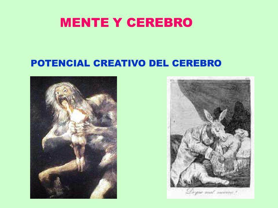 MENTE Y CEREBRO POTENCIAL CREATIVO DEL CEREBRO