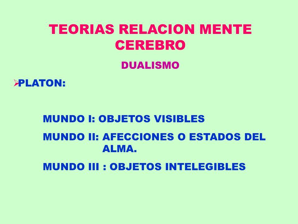 TEORIAS RELACION MENTE CEREBRO DUALISMO PLATON: MUNDO I: OBJETOS VISIBLES MUNDO II: AFECCIONES O ESTADOS DEL ALMA. MUNDO III : OBJETOS INTELEGIBLES