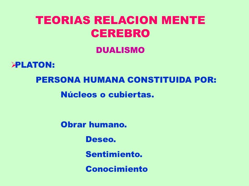 TEORIAS RELACION MENTE CEREBRO DUALISMO PLATON: PERSONA HUMANA CONSTITUIDA POR: Núcleos o cubiertas. Obrar humano. Deseo. Sentimiento. Conocimiento