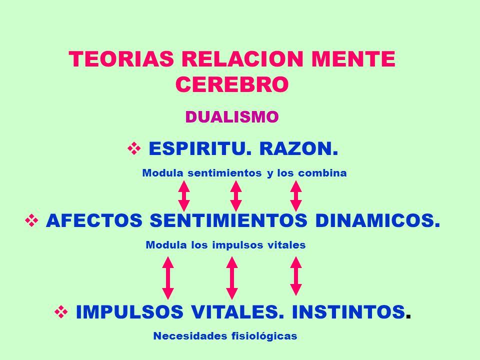 TEORIAS RELACION MENTE CEREBRO DUALISMO ESPIRITU. RAZON. Modula sentimientos y los combina AFECTOS SENTIMIENTOS DINAMICOS. Modula los impulsos vitales