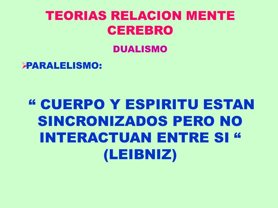 TEORIAS RELACION MENTE CEREBRO DUALISMO PARALELISMO: CUERPO Y ESPIRITU ESTAN SINCRONIZADOS PERO NO INTERACTUAN ENTRE SI (LEIBNIZ)