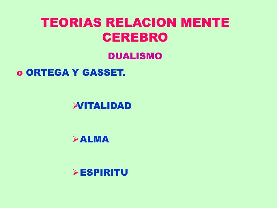 TEORIAS RELACION MENTE CEREBRO DUALISMO o ORTEGA Y GASSET. VITALIDAD ALMA ESPIRITU