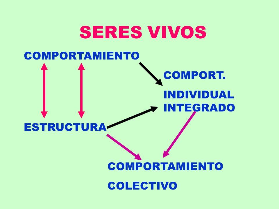 SERES VIVOS COMPORTAMIENTO COMPORT. INDIVIDUAL INTEGRADO ESTRUCTURA COMPORTAMIENTO COLECTIVO