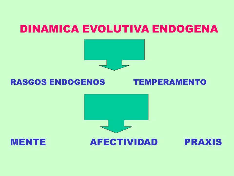 DINAMICA EVOLUTIVA ENDOGENA RASGOS ENDOGENOS TEMPERAMENTO MENTE AFECTIVIDAD PRAXIS