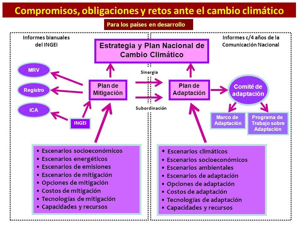 Plan de Mitigación Plan de Adaptación Escenarios socioeconómicos Escenarios energéticos Escenarios de emisiones Escenarios de mitigación Opciones de m