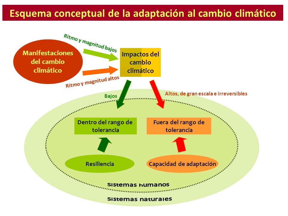 Esquema conceptual de la adaptación al cambio climático Manifestaciones del cambio climático Impactos del cambio climático Ritmo y magnitud bajos Ritm