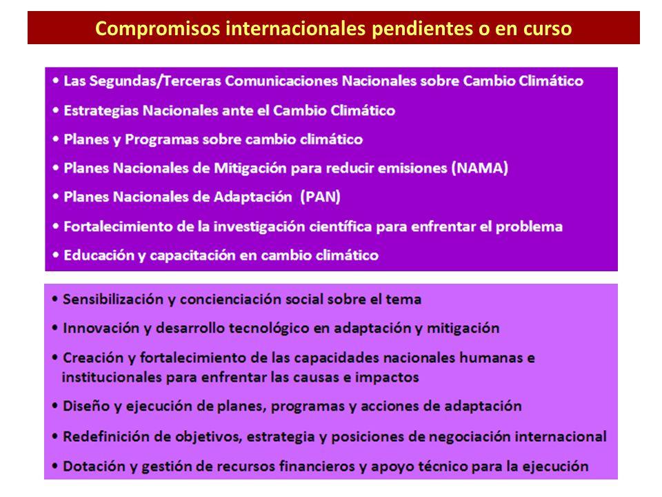 Compromisos internacionales pendientes o en curso