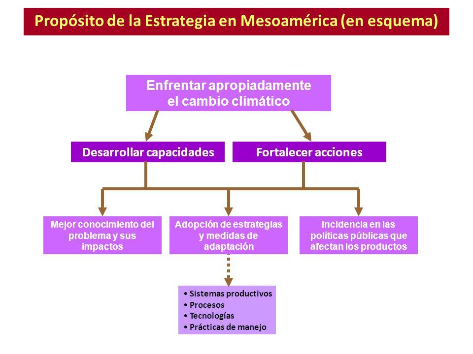 Propósito de la Estrategia en Mesoamérica (en esquema) Enfrentar apropiadamente el cambio climático Sistemas productivos Procesos Tecnologías Práctica