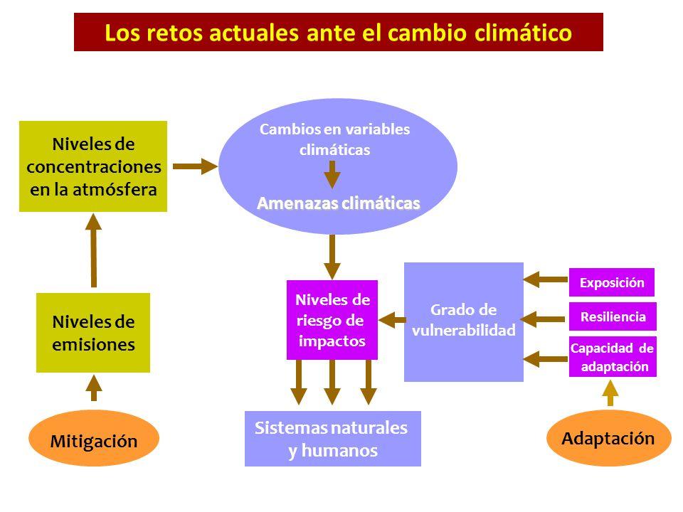 Niveles de emisiones Niveles de concentraciones en la atmósfera Niveles de riesgo de impactos Cambios en variables climáticas Sistemas naturales y hum