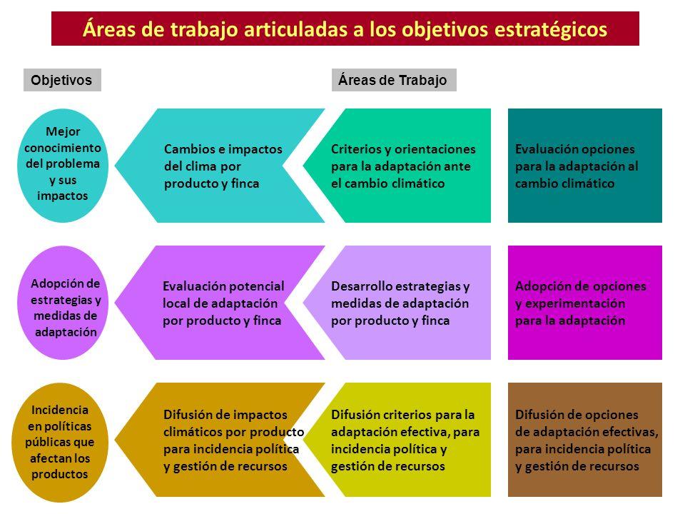 Áreas de trabajo articuladas a los objetivos estratégicos Objetivos Cambios e impactos del clima por producto y finca Criterios y orientaciones para l