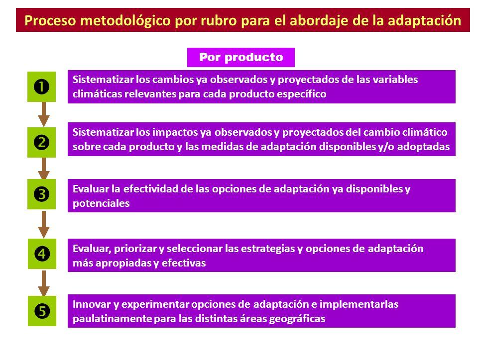 Proceso metodológico por rubro para el abordaje de la adaptación Sistematizar los cambios ya observados y proyectados de las variables climáticas rele