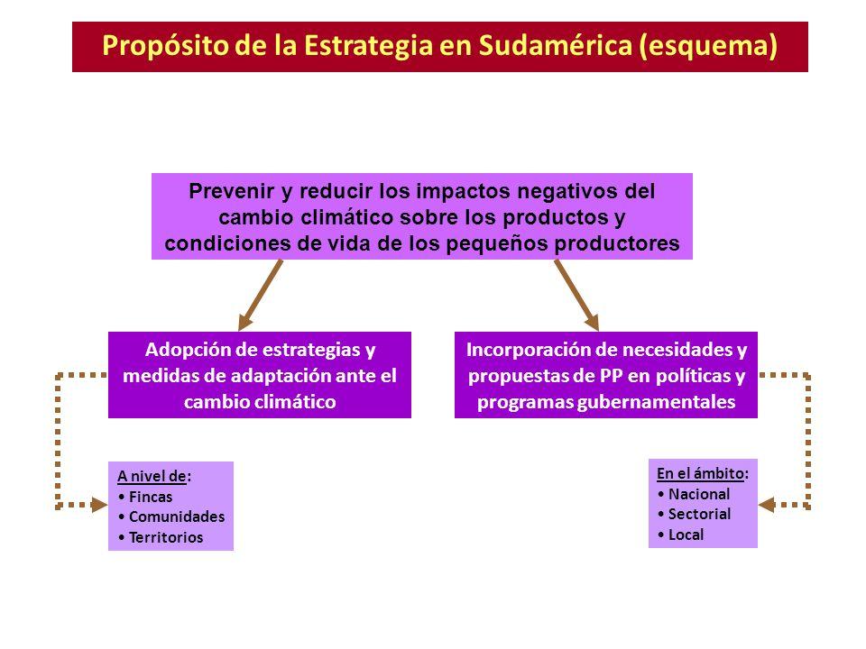 Propósito de la Estrategia en Sudamérica (esquema) Prevenir y reducir los impactos negativos del cambio climático sobre los productos y condiciones de