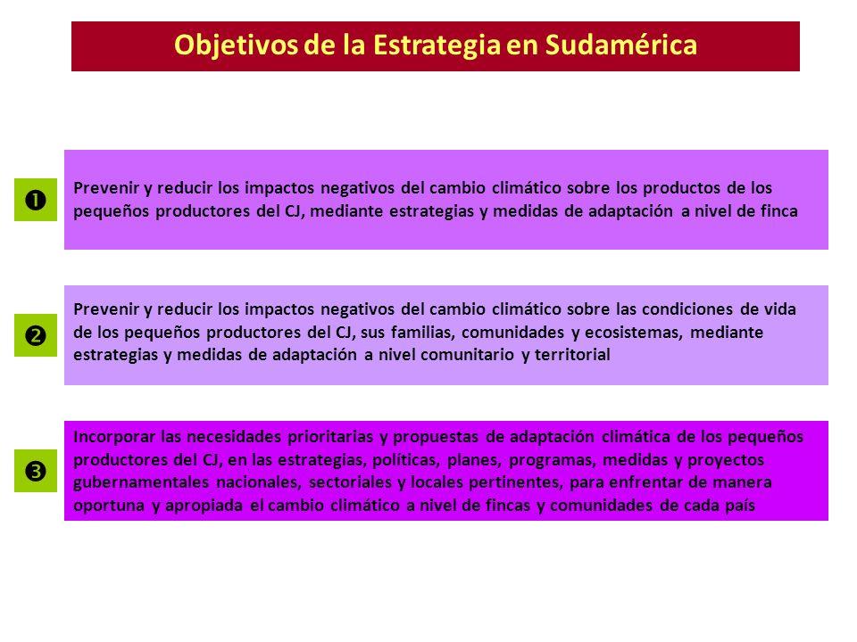 Objetivos de la Estrategia en Sudamérica Prevenir y reducir los impactos negativos del cambio climático sobre los productos de los pequeños productore