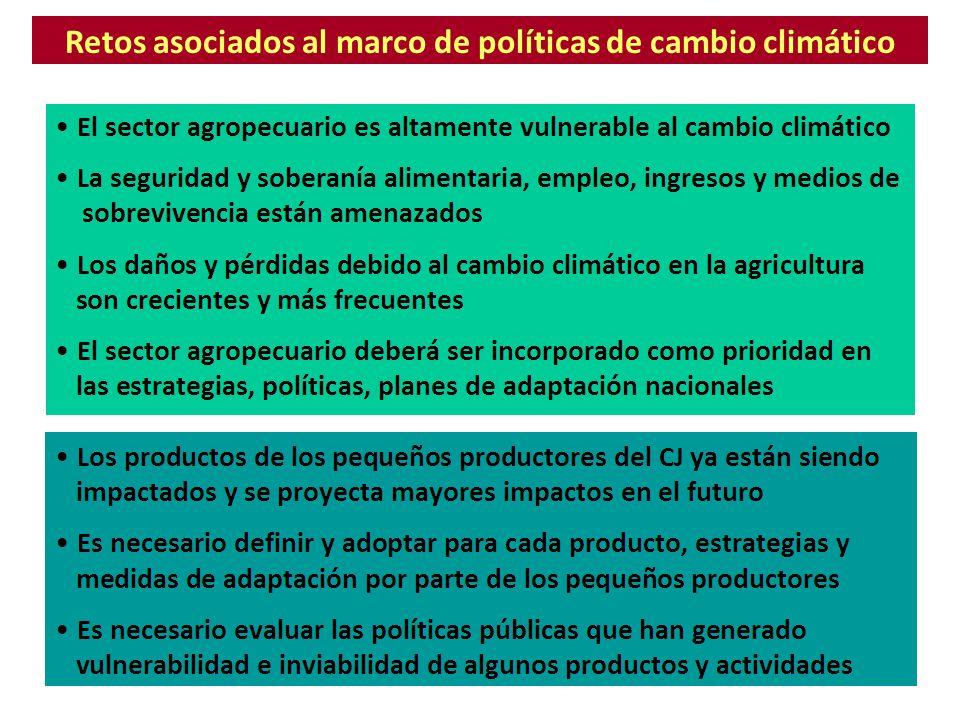 Los compromisos internacionales en cambio climático Proceso multilateral bajo las Naciones Unidas 19921997 19942005 Convención Marco Protocolo de Kioto Mitigación: Reducción de emisiones Adaptación: Reducción de impactos Panel de Expertos IPCC Seguimiento e informe Financiamiento Desarrollo capacidades Ciencia y tecnología Compromisos