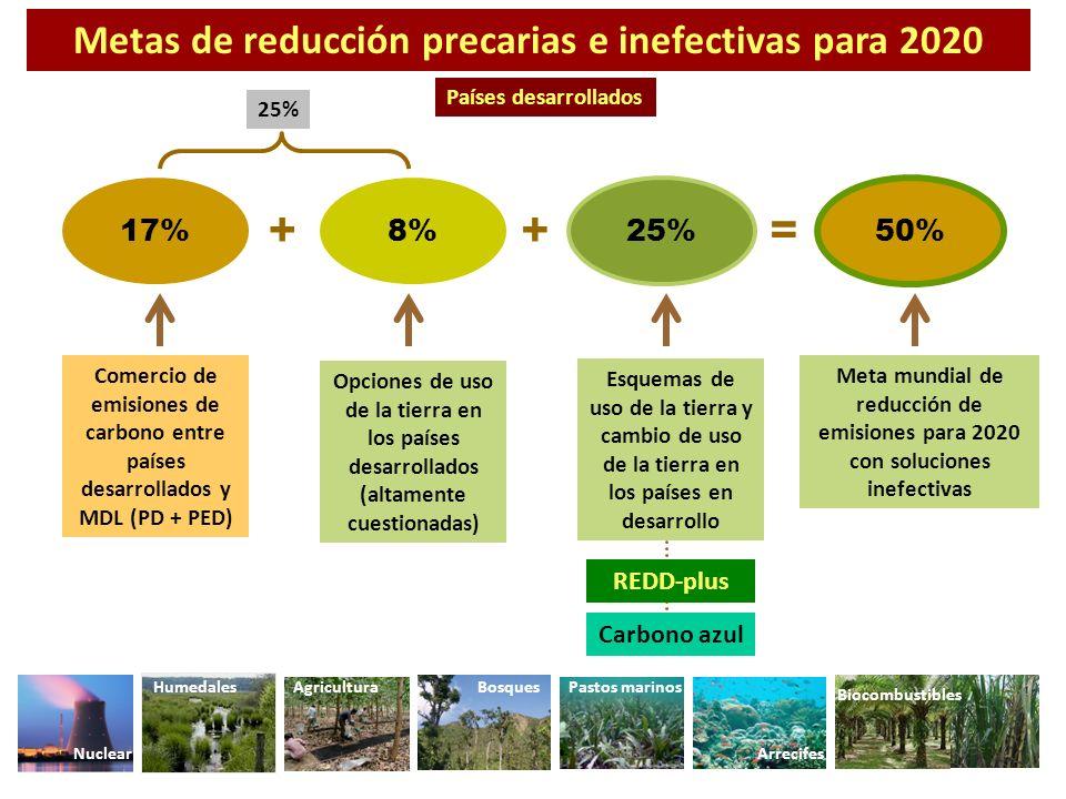 Opciones de uso de la tierra en los países desarrollados (altamente cuestionadas) Comercio de emisiones de carbono entre países desarrollados y MDL (P