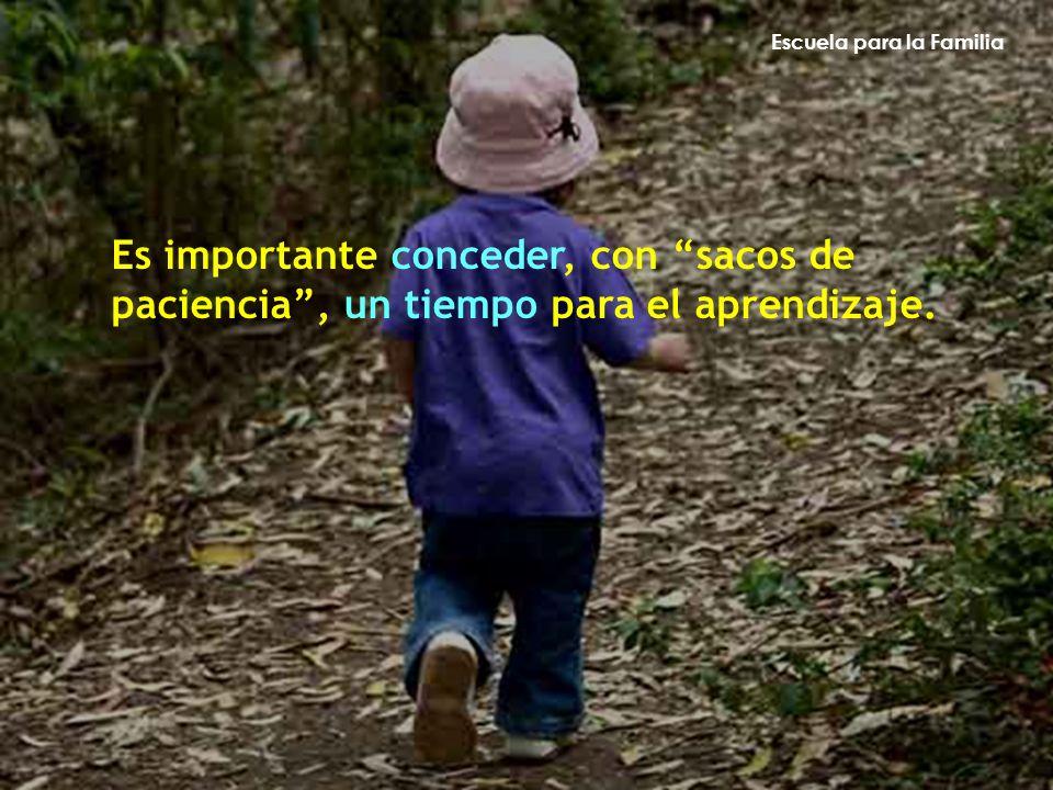 Escuela para la Familia Es importante conceder, con sacos de paciencia, un tiempo para el aprendizaje.