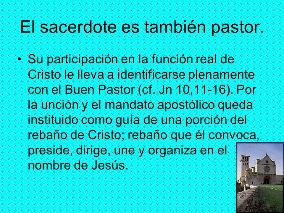 42 El sacerdote es también pastor. Su participación en la función real de Cristo le lleva a identificarse plenamente con el Buen Pastor (cf. Jn 10,11-