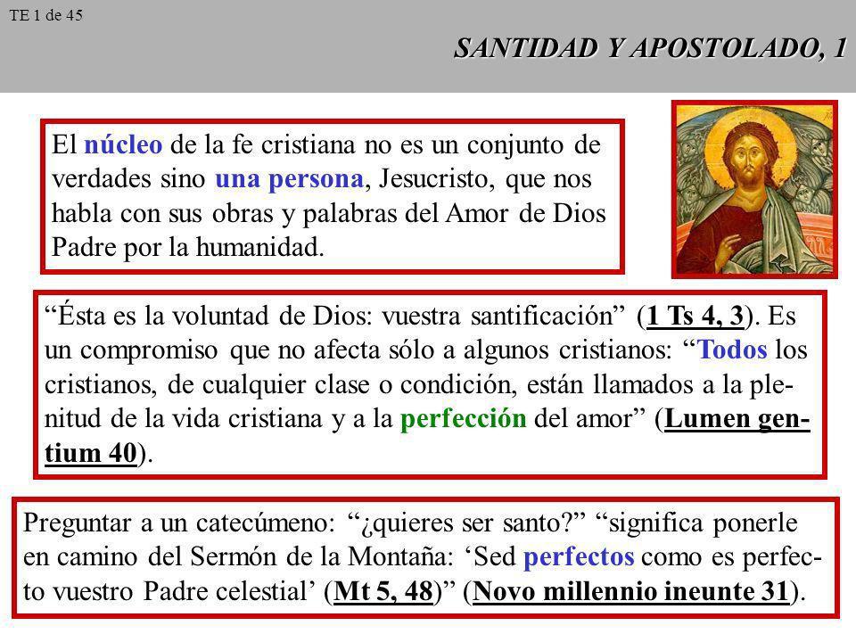 SANTIDAD Y APOSTOLADO, 1 El núcleo de la fe cristiana no es un conjunto de verdades sino una persona, Jesucristo, que nos habla con sus obras y palabr