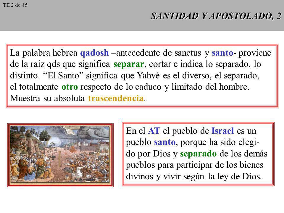 SANTIDAD Y APOSTOLADO, 2 La palabra hebrea qadosh –antecedente de sanctus y santo- proviene de la raíz qds que significa separar, cortar e indica lo s