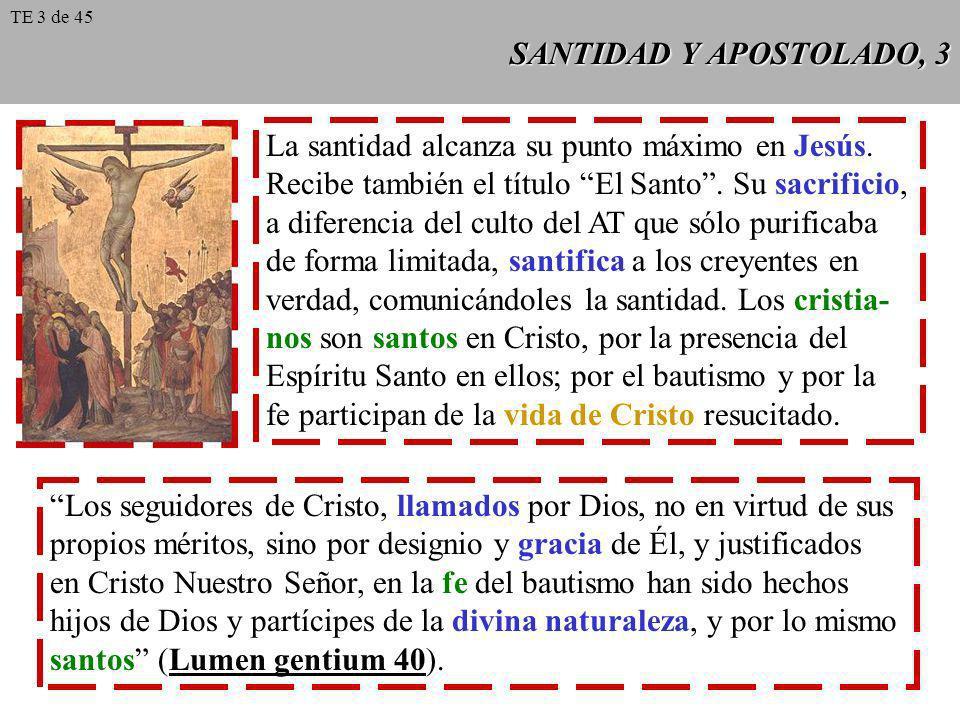 SANTIDAD Y APOSTOLADO, 3 La santidad alcanza su punto máximo en Jesús. Recibe también el título El Santo. Su sacrificio, a diferencia del culto del AT