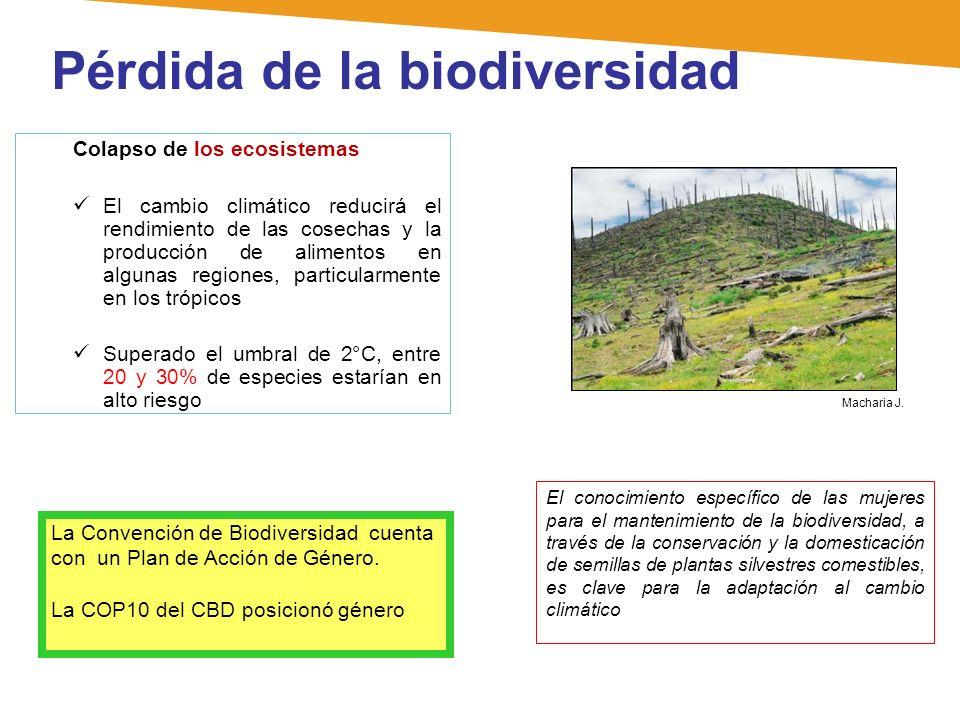 Pérdida de la biodiversidad Colapso de los ecosistemas El cambio climático reducirá el rendimiento de las cosechas y la producción de alimentos en alg