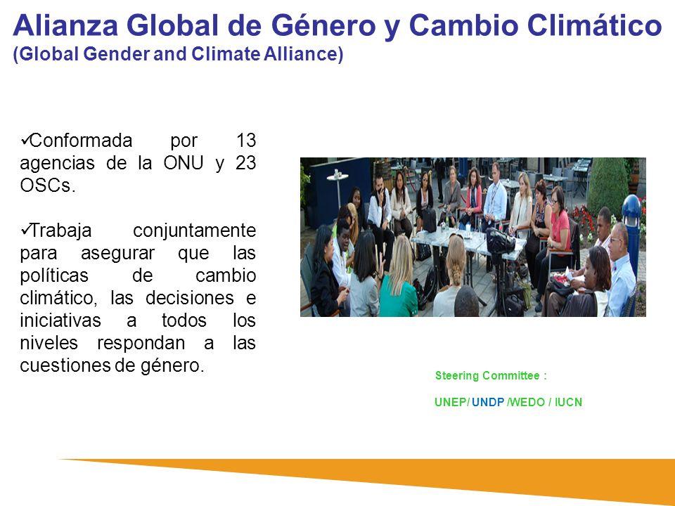 Alianza Global de Género y Cambio Climático (Global Gender and Climate Alliance) Conformada por 13 agencias de la ONU y 23 OSCs. Trabaja conjuntamente
