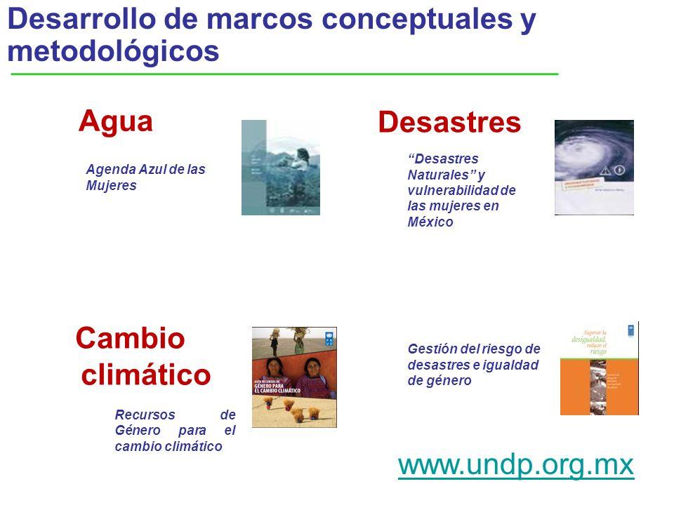 Desarrollo de marcos conceptuales y metodológicos Desastres Agenda Azul de las Mujeres Desastres Naturales y vulnerabilidad de las mujeres en México G