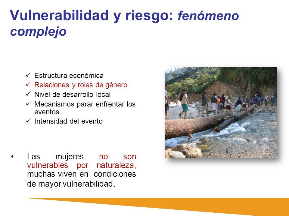 Vulnerabilidad y riesgo: fenómeno complejo Estructura económica Relaciones y roles de género Nivel de desarrollo local Mecanismos parar enfrentar los