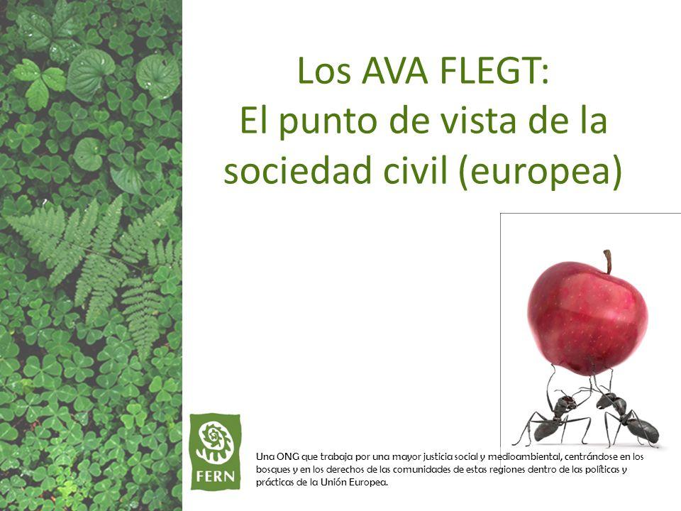 Una ONG que trabaja por una mayor justicia social y medioambiental, centrándose en los bosques y en los derechos de las comunidades de estas regiones dentro de las políticas y prácticas de la Unión Europea.