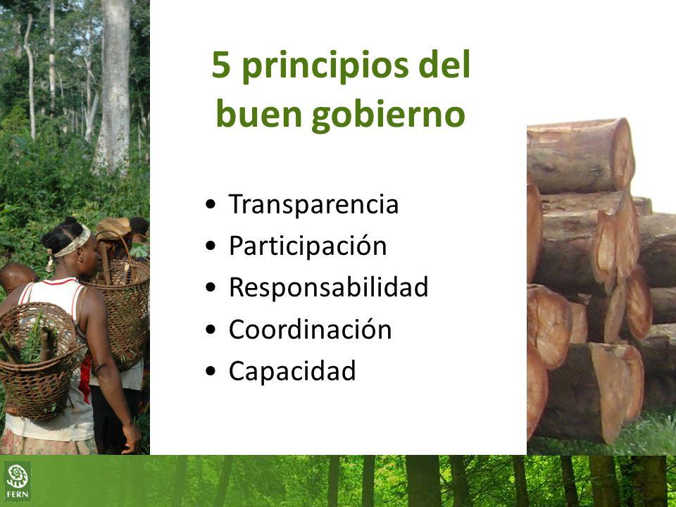 5 principios del buen gobierno Transparencia Participación Responsabilidad Coordinación Capacidad