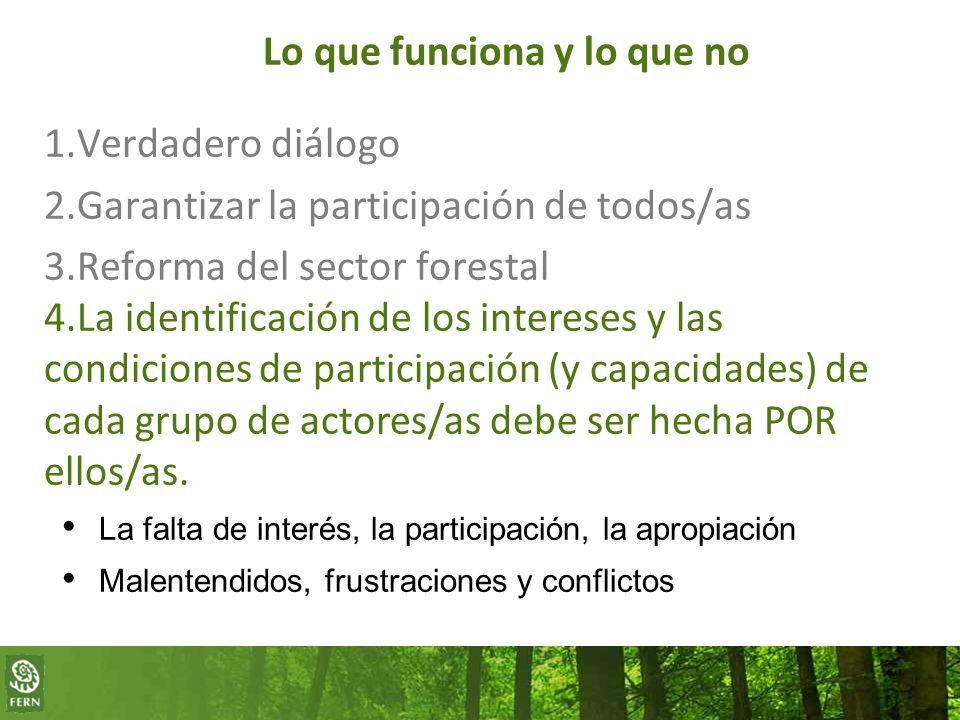 Lo que funciona y lo que no 1.Verdadero diálogo 2.Garantizar la participación de todos/as 3.Reforma del sector forestal 4.La identificación de los intereses y las condiciones de participación (y capacidades) de cada grupo de actores/as debe ser hecha POR ellos/as.