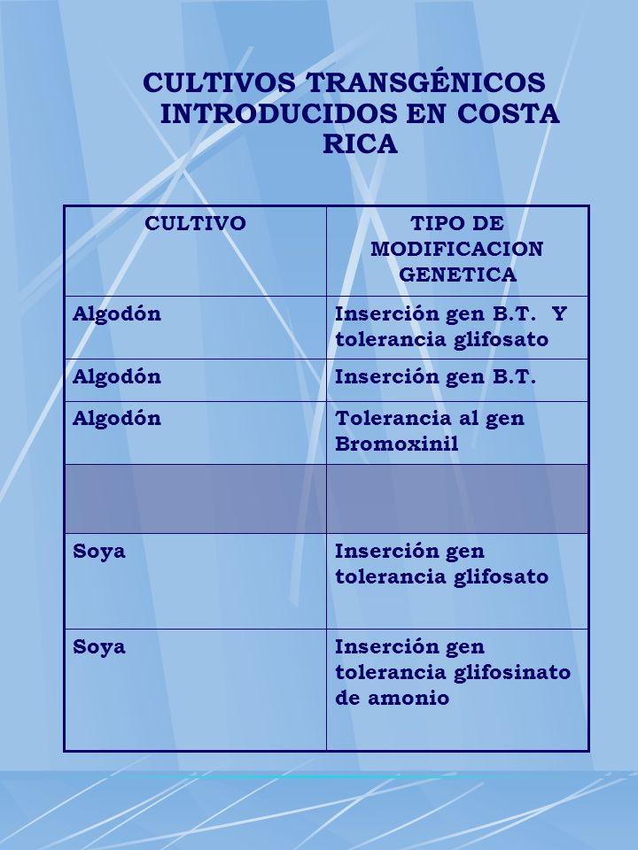 CULTIVOS TRANSGÉNICOS INTRODUCIDOS EN COSTA RICA TIPO DE MODIFICACION GENETICA CULTIVO Inserción gen tolerancia glifosinato de amonio Soya Inserción g