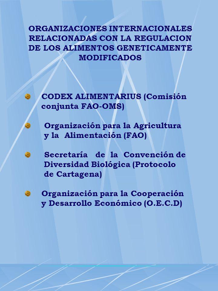 ORGANIZACIONES INTERNACIONALES RELACIONADAS CON LA REGULACION DE LOS ALIMENTOS GENETICAMENTE MODIFICADOS CODEX ALIMENTARIUS (Comisión conjunta FAO-OMS
