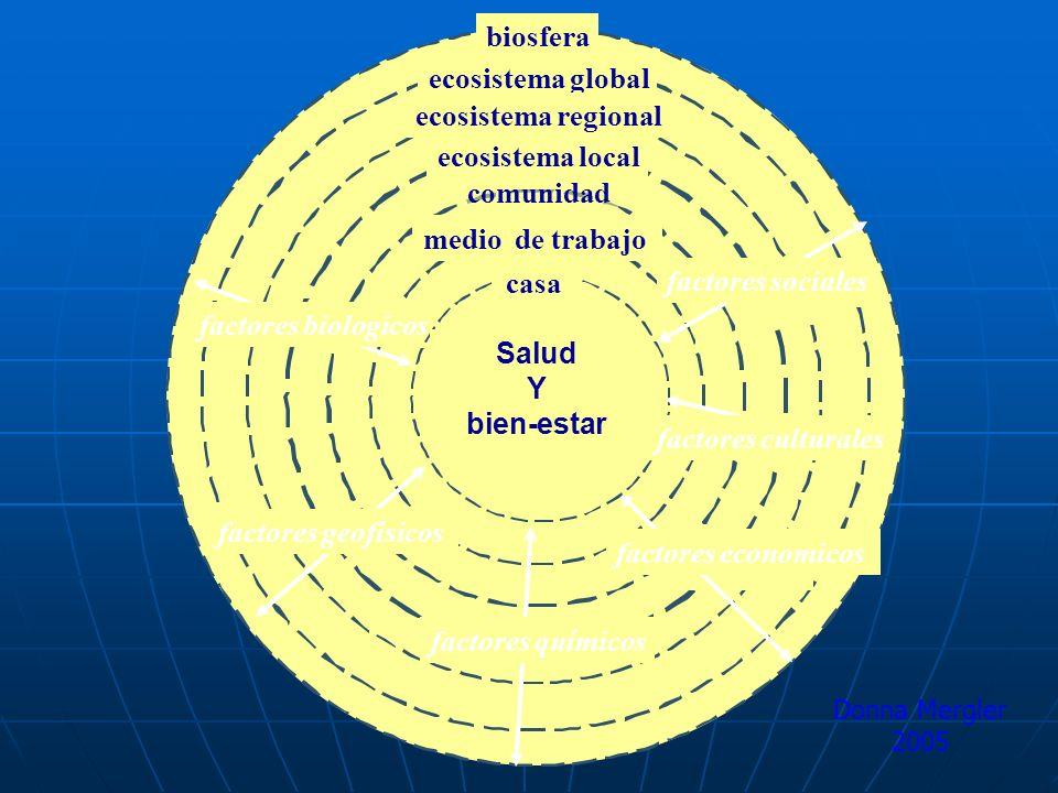 biosfera ecosistema global ecosistema regional ecosistema local comunidad medio de trabajo factores geofísicos factores biologicos factores economicos