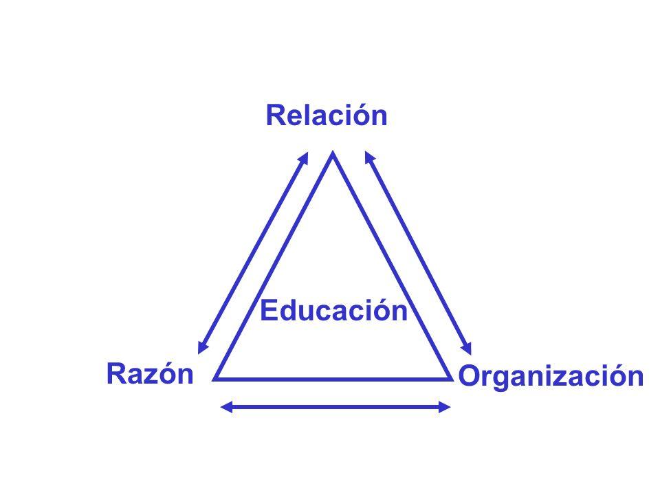 Organización Razón Educación Relación